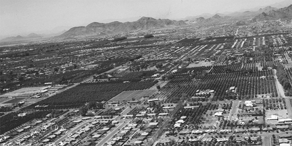 image of Mid Century Growth