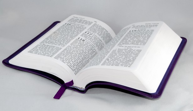 graphic of bible