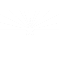 State Flag vector icon